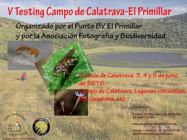 Cartel del V testing Campo de Calatrava - El Primillar.